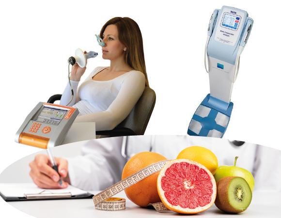 bioimpendacia y alimentos saludables
